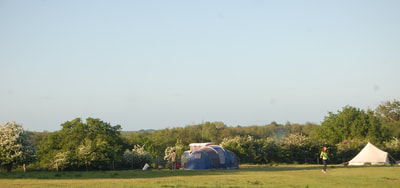 Tent in campsite, Salhouse Broad, Norwich, Norfolk